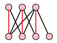 SE Networks